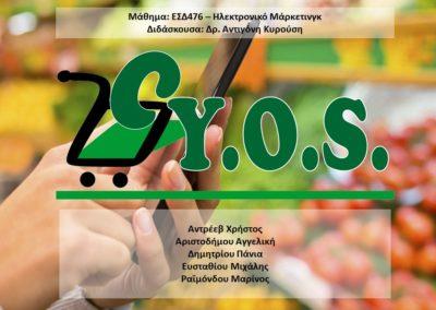 CYOS presentation